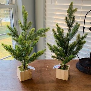 Set of 2 Christmas Trees